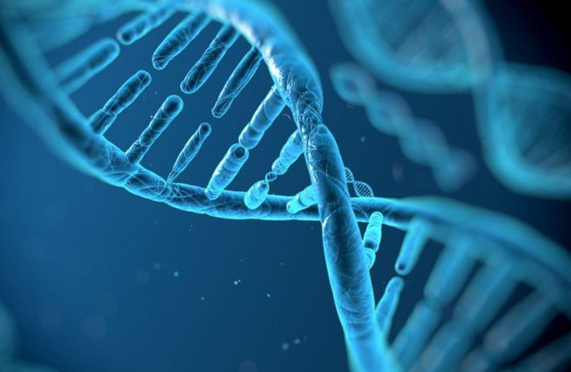fondos sector biotecnologia