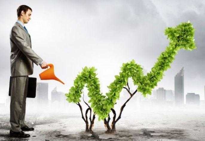 opinion cobas seleccion, cobas value investing
