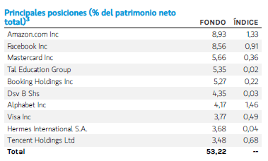 morgan stanley global opportunities inversiones