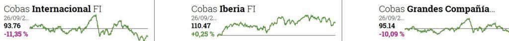 valores liquidativos fondos cobas