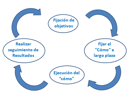 asset allocation proceso