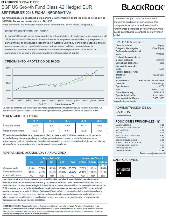 mejores fondos acciones usa 2019, ficha del fondo blackrock bgf us growth fund